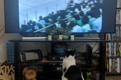 Athena loves to watch hockey games and action movies, just like her pops.